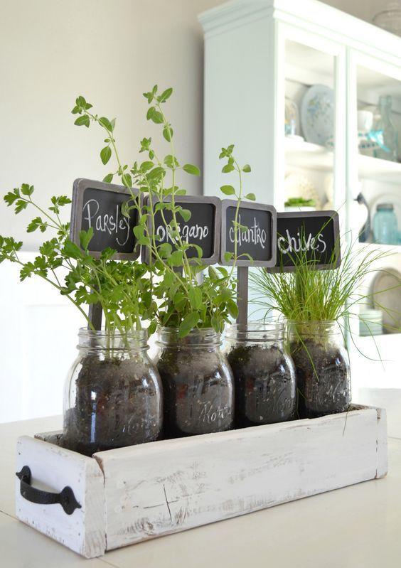 tabletop indoor herb garden | Indoor herb garden, Herbs indoors .