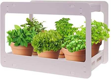 Amazon.com : Extra Wide LED Indoor Herb Garden - at Home Stackable .