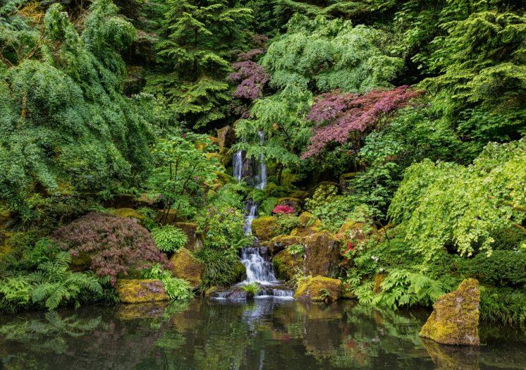 Portland Japanese Garden – Portland Japanese Gard