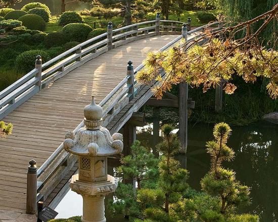 Elizabeth Hubert Malott Japanese Garden | Chicago Botanic Gard