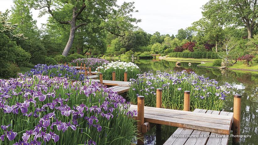 Tips for a Beautiful Japanese Garden | Garden Ga