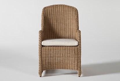 Sebastian Outdoor Woven Dining Chair | Living Spac