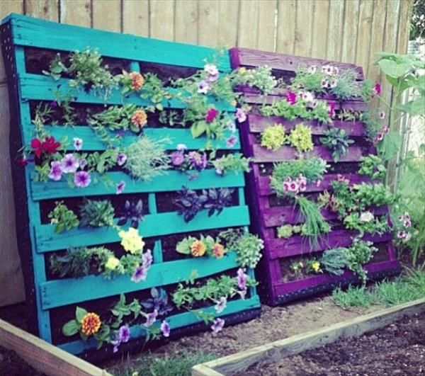 DIY Pallet Gardens - 20 Creative Ways to Use Pallets | 99 Pallets .