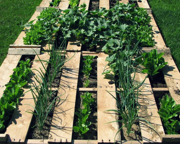 How to Build a Pallet Garden - Upcycle Project - Survival Garden