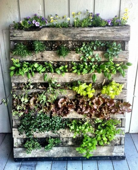 Make a Pallet Garden in 7 Easy Steps | Herb garden pallet, Pallet .