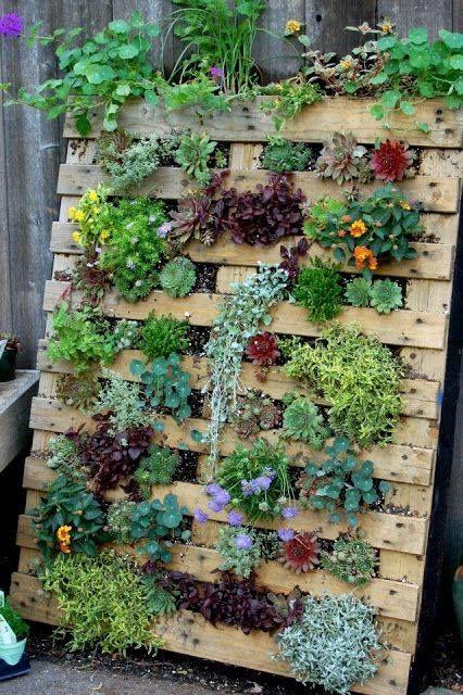 Raised and Enclosed Garden Bed | Vertical garden diy, Garden yard .