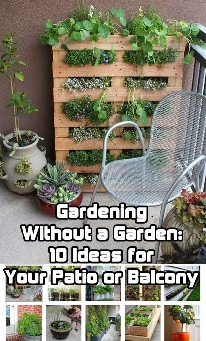 Pin by Alexandria Hammer on gardening | Apartment garden, Balcony .