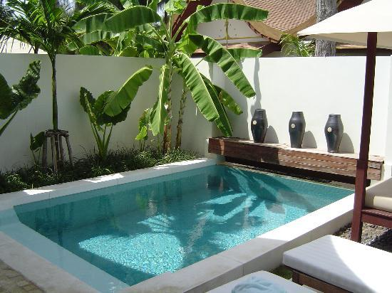 Private Plunge Pool in Sala Pool Villa - Picture of SALA Samui .