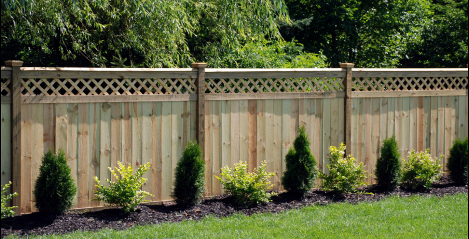 Adding Value to Your Home with a Backyard Fen