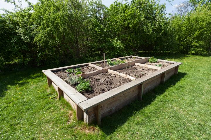 How to Build a Raised Garden Bed: Planning, Building, and Planting .