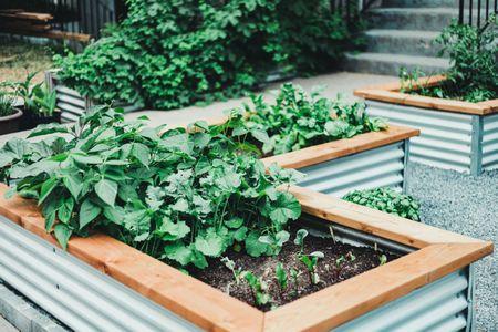 15 Raised Bed Garden Design Ide