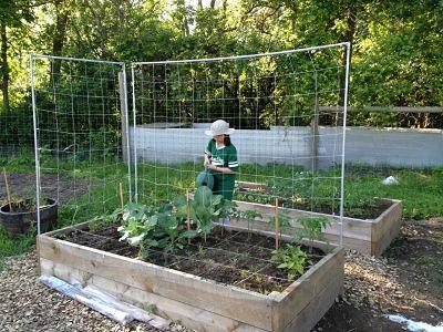 Henke's Raised Bed Garden | Sustainability Ne