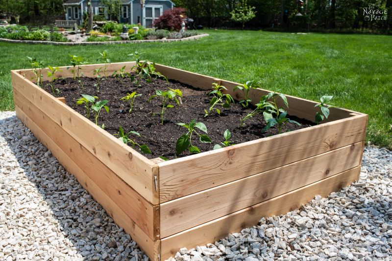 How to Build a Raised Garden Bed - The Navage Pat