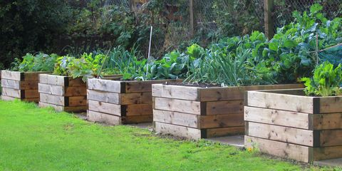 How to Build a Raised Garden Bed - DIY Raised Bed Instructio