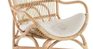 Amazon.com: KOUBOO Rattan Loop Lounge Chair with Seat and Head .