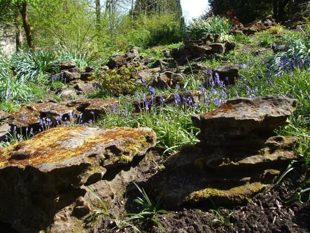 Rock garden - Wikiped