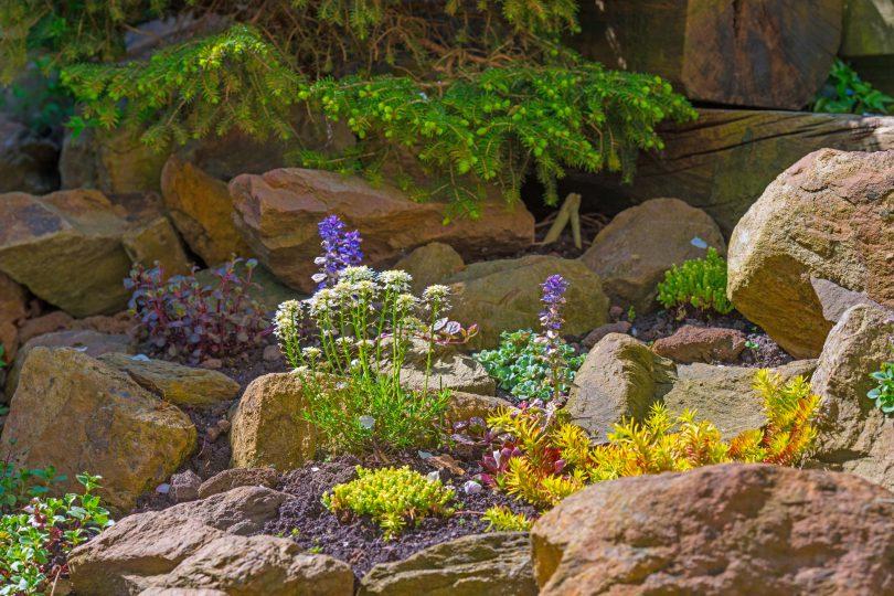 Create a Rockin' Rock Garden | Colorado Country Life Magazi