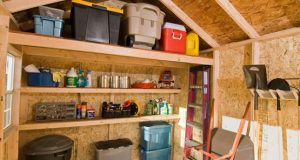 The Dos and Dont's of Shed Organization | Storage shed .
