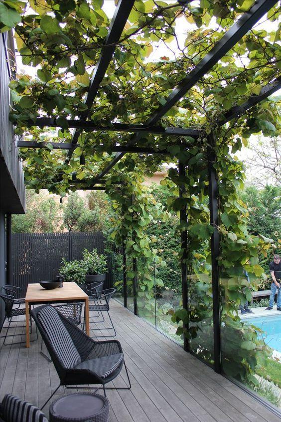 Steel Pergola | Backyard garden design, Contemporary garden design .