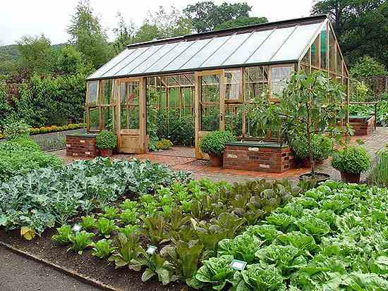 How to Plan a Bigger, Better Vegetable Garden | MOTHER EARTH NE