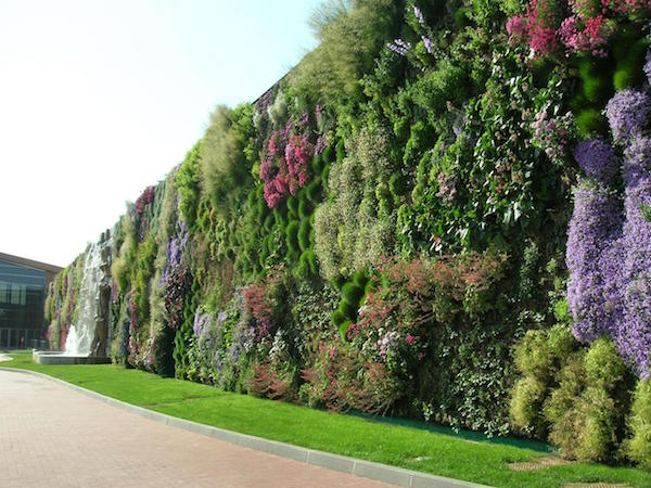 What Is Vertical Gardening? 101   Grow Green Fo