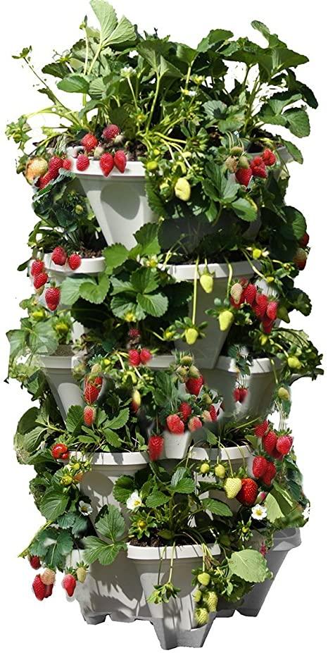 Amazon.com: Mr. Stacky 5 Tiered Vertical Gardening Planter, Indoor .