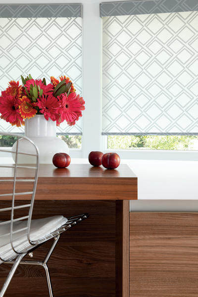 Roller Window Shades Sarasota & Bradenton, FL - Blinds and Desig